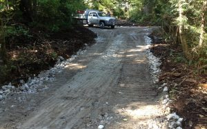 access road development in a forest area