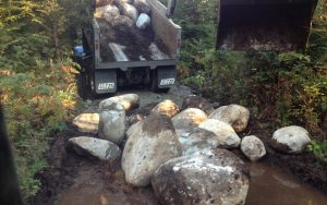 rocks fill stagnant water