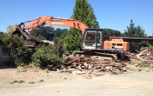 house demo and yard clean-up