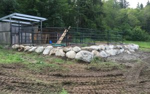 erosion control near horse stable