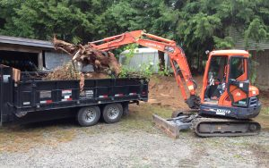 excavator tree clean up