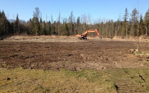 clearing land for house build