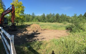 site prep brush clearing