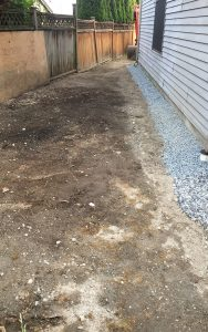 wet basement repair clean up